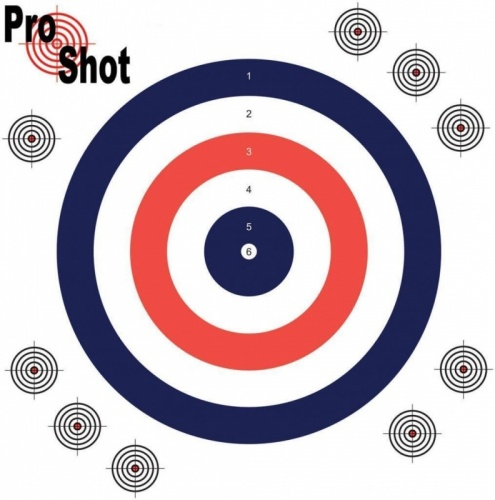 ProShot Air Rifle Practice Targets 17x17cm Pack of 100